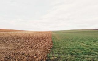 bonifica terra dei fuochi ministero ambiente